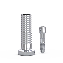 Picture of FlatOne® Abutment Titanium Cylinder, w/ Retaining Screw